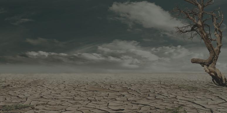 pablo (100)drought